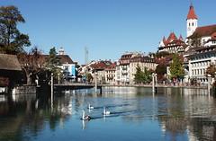 Thun und der Herbst (welenna) Tags: autumn castle architecture river switzerland swan herbst kirche stadt thun schloss fluss schwan sity aare wasserspiegel