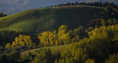Penne - Le Dolci Colline in Autunno (Andrea di Florio (Thanks for 6,000,000 views)) Tags: andreadiflorio abruzzo pescara penne nikon d600 7020028 cielo luna campo nuvole nubi camminare vacanza