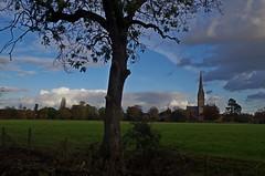 1353-12L (Lozarithm) Tags: salisbury wilts trees landscape cathedrals pentax zoom k50 1855 smcpda1855mmf3556alii