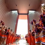 FSU at Clemson - Mcinnis Photos