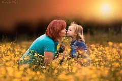 Kiss (foto.evines) Tags: family portrait love field mom kid kiss moody child closeness familyphoto familyportrait rodina portrét děti evinesfoto