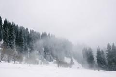 (JC.Murphy) Tags: winter snow mountains ice nature forest trek fuji hike wilderness kazakhstan almaty tianshan medeu  vsco xe2