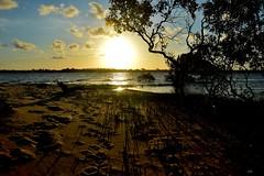 DSC_0016 (RUMTIME) Tags: sunset s coochie coochiemudlo