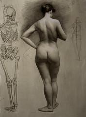 Female Nude with Skeleton (STORMZORN) Tags: maiden madchen mortsqueletteskeletonfemmedame fillejeunewomannakedmementomorinuenude erosthanatosdansemacabrecadavercadavreznortcraneskull muertechica todtott tanzdellamorte