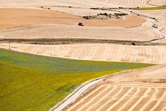 Linien - lneas (Rainer ) Tags: felder getreide fields grain linien lneas lines iberischemeseta castilla kastilienlen espaa spanien spain espagne color sommer2016 rainer