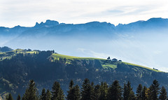 Blick vom Hohen Hirschberg (maikepiel) Tags: schweiz switzerland appenzell hirschberg mountains hills berge nebel mist trees bume blue blau green grn meadow wiese alm