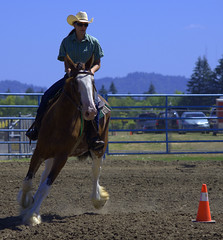 Equestrian Skills (swong95765) Tags: horse rider rodeo manuvering skill challenge sport equestrian animal turn riding