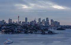 Sydney Skyline (fiston22) Tags: skyline sydney buildings sunset grey boat yatch tower ocean