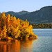Photo tagged with Fallcolors