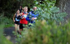 Hallwilerseelauf: 10 Kilometer-Lauf durch den Wald