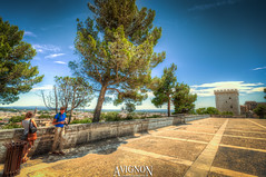 Avignon, Vaucluse, Provence-Alpes-Cte d'Azur (PACA), France (Stewart Leiwakabessy) Tags: france franceholidays peugeot308 n7roadtrip people saturation drvingaround franceholidays2015 bracketed hdr france2015 multiexposure photomatix car highdynamicrange provence2015 roadtrip tonemapped gite montventoux stewartleiwakabessy fr
