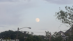 2016.08.16; Keyport Moonrise & Sunset-2 (FOTOGRAFIA.Nelo.Esteves) Tags: keyport newjersey unitedstates us 2016 neloesteves samsung note5 usa nj monmouthcounty bayshore waterfront moonrise sunset moon sky august summer