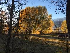 Tardor. Cerdanya (francescsoler) Tags: cerdanya puigcerd age pirineus otoo