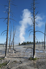 Geyser Basin  ** (rich0234) Tags: nature yellowstonenationalpark geyserbasin