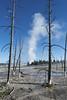 Geyser Basin  ** (rich0234) Tags: nature yellowstonenationalpark geyserbasin