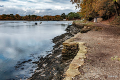 _DSF0311- Le Bono (Jack-56) Tags: golfedumorbihan lebono france fujix100t rivière bretagne