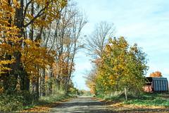 Autumn Road (gabi-h) Tags: autumn fall road foliage farmmachinery farmequipment gabih princeedwardcounty trees farm landscape