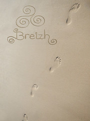 Beach art-02 (yanific) Tags: beachart landart plage beach bretagne breizh pas traces tracesdepas steps