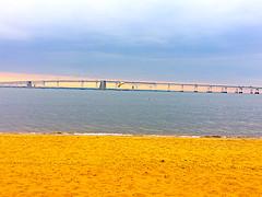 Sandy Point (Suzenews) Tags: seagull maryland annapolis beach chesapeakebaybridge sandypoint chesapeakebay