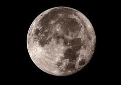 SUPERLUNA BRUNO.P (brunopolizzi) Tags: supermoon superluna luna piena rotondo canoneos550d efss55250isstm 55250 circolare notte night italia italy toscana tuscany beautiful astronomy astronomia stelle star universo satellite