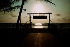 Magic Sunset (valeriya.gorbunova) Tags: srilanka sunset ocean colombo sky indianocean palm shadows contrast sunlights sand beach