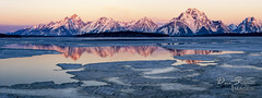 Alpenglow on Grand Tetons, Reflecting in Jackson Lake (JusDaFax) Tags: grandtetons nationalpark wyoming alpenglow jackson lake ice partial frozen mountains peaks travel wanderlust west western