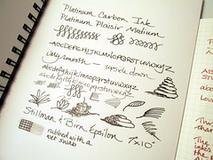Platinum Plaisir, Carbon Ink in a Stillman & Birn Sketchbook (inkophile) Tags: platinumpen plaisir platinum ink stillmanbirnsketchbook