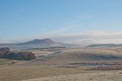 Frosty hills (nigeltriharder) Tags: northumberlandwinter cheviots wooler mist frost ice winter hills valleys cold
