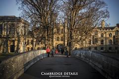 Cambridge Details (Antonino Novena Photography) Tags: antoninonovenaphotography originalcontent cambridgedetails trinity college cambridge