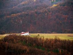 A lonely house far away (R_Ivanova) Tags: landscape nature hill house field forest fall autumn mountainside colors color bulgaria sony rivanova      autoremovedfrom10to25faves