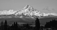 Mount Hood, Oregon (maytag97) Tags: mthood mounthood oregon bw maytag97