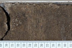 Sediment Core Imaged and Sticthed using Macropod Drill CORE by Macroscopic Solutions (Macroscopic Solutions) Tags: drillcore macro micropanoramic stitch zstack photomacrography macroscopicsolutions fluorescence geophysics core sediments ice imaging sediment image drill macropod samples macropd automated cores high resolution mark sample geoscience seismology geology aapg goelogy smith rock petroleum structural