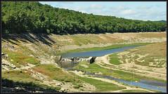 0431 guerledan (cbibi35) Tags: 22 lac bretagne sec arbre bzh cotedarmor guerledan lacdeguerledan