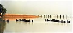 White silence (Katarina 2353) Tags: landscape interlaken lake autumn switzerland film white water swiss alps panorama outdoor fall analog nikon katarinastefanovic katarina2353 orange reflection vacation travel thunersee
