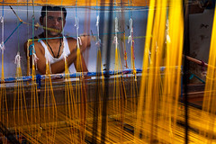 Weaving. Maheshwar, India (Marji Lang Photography) Tags: travel people india man color colors yellow composition photography one colorful factory indian working creative silk documentary clothes workshop worker dailylife saree making weaving sari weave oneperson narmada holycity malva madhyapradesh travelphotography documentaire indiatravel malwa holkar centralindia maheshwari documentaryphotography maheshwar ef2470mm narmadariver weavingworkshop lifeinindia travelimages metieratisser sarifactory canon5dmii documentaryimages marjilang khargonedistrict maheshwarcity