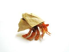 Hermit Crab (Al3bbasi.) Tags: sculpture fish art paper design origami crab sealife hermit kamiyasatoshi brianchan al3bbasi