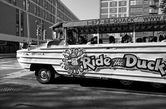 Ride the Duck (_steve h_) Tags: urban blackandwhite bw usa philadelphia monochrome duck tour ride candid sony streetphotography tourists vehicle amphibious sightseers nex6