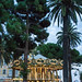 """Promenade Des Englais • <a style=""""font-size:0.8em;"""" href=""""http://www.flickr.com/photos/25269451@N07/21380284502/"""" target=""""_blank"""">View on Flickr</a>"""