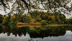 Bara Loch (Will Gell) Tags: autumn trees lake reflections nikon sigma will loch bara gell 1770mm d7000