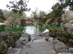 Auburn Japanese Gardens (pat.bluey) Tags: gardens australia auburn newsouthwales 1001nights japanesegardens flickraward 1001nightsmagiccity