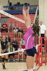 DJT_3458 (David J. Thomas) Tags: sports athletics women lions volleyball arkansas scots batesville lyoncollege freedhardemanuniversity