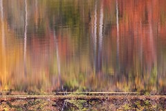reflections of the fall ~ Huron River (j van cise photos) Tags: autumn trees fall nature colors reflections river woods scenery artistic michigan creative surreal huronriver impressionism