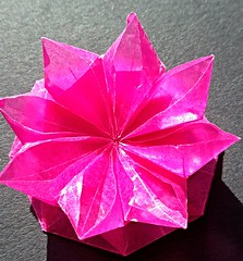 Flower from Octagon A (modular.dodecahedron) Tags: origamistar tomokofuse