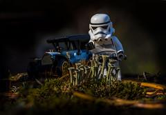 Storm Trooper Picking Flowers (Steve Muise) Tags: storm trooper macro focus stack