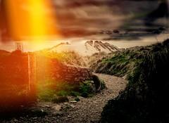 Pathway (garethleethomas) Tags: winter beach clouds landscape path walk sony cybershot pembrokeshire sanddunes