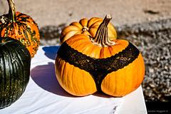 pumpkin in panties (DIGITAL IDIOT) Tags: pumpkin panties digitalidiot ©allrightsreserved