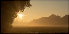 Sunrise in the mist, Netherlands (CvK Photography) Tags: canon color cvk enschede europe fog landscape nature netherlands outdoor overijssel sun sunrise twente