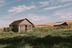 A Dance Of Shadows (Pedalhead'71) Tags: malden washington abandoned barn shack hills palouse