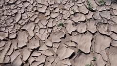 072-Maroc-S17-2014-VALRANDO (valrando) Tags: sud du maroc im sden von marokko massif saghro et dsert sahara erg sahel