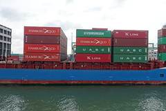 Shipping containers on boat @ Container terminal @ Harbour Tour @ Spido @ Rotterdam (*_*) Tags: rotterdam netherlands nederland city europe october autumn fall 2016 cloudy morning spido nieuwemaas river cruise boat ship harbour tour container cargo harbor port